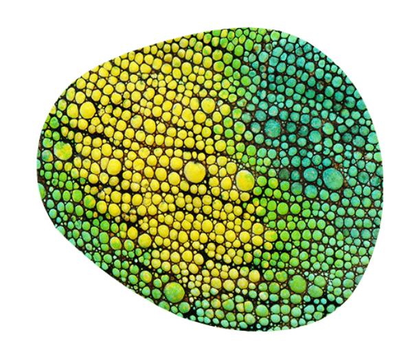 Effektpigmente & Additive in den Nordics: Iriodin WAY-Pigmente von Merck | Foto: Merck